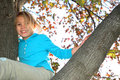 Up In A Tree Royalty Free Stock Photos - 1631028