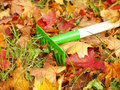 Leaves With Rakes Stock Images - 16313854
