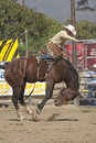 San Dimas Rodeo Saddle Bronc Stock Image - 16324911