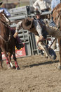San Dimas Rodeo Saddle Bronc Stock Photos - 16325043