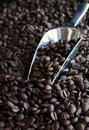 Coffee Beans And Metal Scoop Royalty Free Stock Photography - 16401147