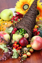 Cornucopia Royalty Free Stock Image - 16449636