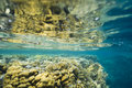 Shallow And Colorful Tropical Coral Reef. Stock Images - 16454784