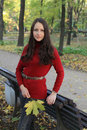 Young Woman In Autumn Park Stock Images - 16463424
