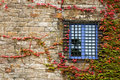 Old Window Royalty Free Stock Image - 1659846