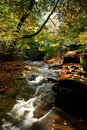 A Fall Stream Royalty Free Stock Image - 16514886