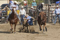 San Dimas Rodeo Steer Wrestling 4 Royalty Free Stock Image - 16553596