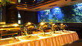 Buffet Party Stock Images - 16569264