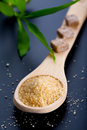 Spoon With Brown Sugar Royalty Free Stock Photography - 16579477