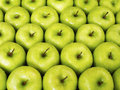 Green Apples Stock Photos - 16587683