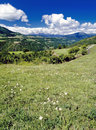 Alpine Meadow Royalty Free Stock Images - 1664059