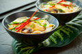 Chicken Noodle Soup Stock Photography - 16606492