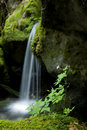 Small Waterfall Stock Photos - 16616703