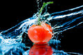 Tomato And Splash Water Stock Images - 16634364