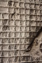 Ancient Wall With Buddha S Figures - Background Royalty Free Stock Images - 16758269