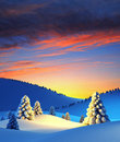 Winter Landscape With Fir Trees Royalty Free Stock Photography - 16811957