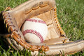 Baseball Glove Royalty Free Stock Images - 16819429