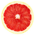 Grapefruit Stock Photos - 16832963