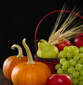 Autumn Basket Stock Images - 16844114