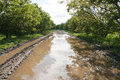 Road With Puddle Stock Photography - 16852012