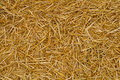 Straw Texture Royalty Free Stock Photography - 16886027