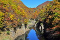 Autumn Trees Reflected In Tonegawa River Royalty Free Stock Images - 16886919