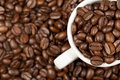Espresso Cup Full With Roasted Coffee Beans Royalty Free Stock Photos - 16982688