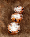 Muffins Stock Photography - 16992492