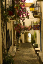 Cobbled Street In Spain Stock Image - 17002111