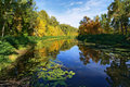 Small River In The Forest At Golden Autumn Royalty Free Stock Photography - 17078817
