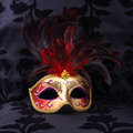 Mask At A Black Velvet Seat  (Venice, Italy) Stock Images - 1720134