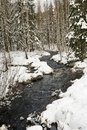 Winter Swedish Brook Royalty Free Stock Images - 17202199