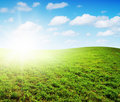 Green Field Under Midday Sun Royalty Free Stock Photo - 17351505