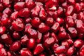 Grains Of A Pomegranate Royalty Free Stock Photos - 17364958