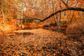 Fall Colours Royalty Free Stock Photography - 17390757
