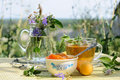 Summer Tea Time Stock Photo - 17390840