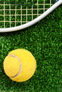 Tennis Ball On Grass Stock Images - 17409374