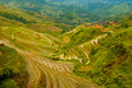 Flooded Rice Terrace Valley Traditional Village Stock Photo - 17451880