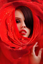 Beautiful Face In Red Roses Petals Royalty Free Stock Image - 17455046