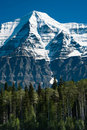 Trees In Front Of Mt. Robson In BC, Canada Stock Photography - 17473842