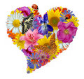Flower Heart Royalty Free Stock Images - 17590089
