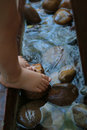 Feet In Pond Water Stock Photo - 1762500