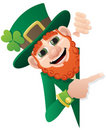 Leprechaun Sign Royalty Free Stock Photo - 17635245