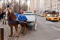 Horse Chariot In New York City Royalty Free Stock Photography - 17675817