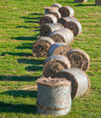 Hay Bales Royalty Free Stock Photography - 17695667