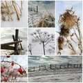 Cold Winter Collage Stock Photos - 17714663