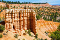 Bryce Canyon Stock Photography - 17744172