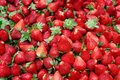 Fresh Red Ripe Strawberries Royalty Free Stock Image - 17751376