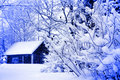 Winter Rural House Under Snowfall Stock Photography - 17794812
