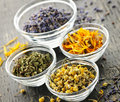Dried Medicinal Herbs Stock Image - 17802151
